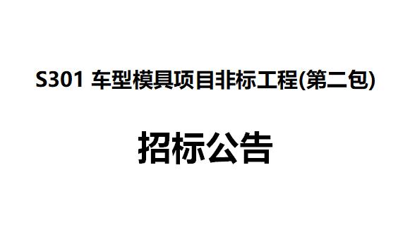 S301车型模具项目非标工程(第二包) 招标公告
